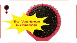 The Wet Brush - Oh Wow It Really Works!