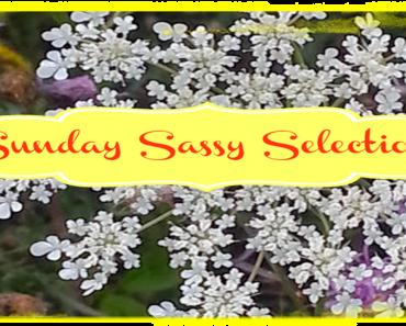 Sunday-Sassy-Selections