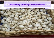 Sunday's Sassy Selection