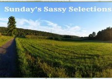 Sundays-Sassy-Selections