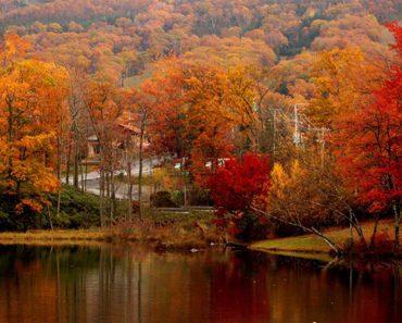Autumn Speaks For Itself