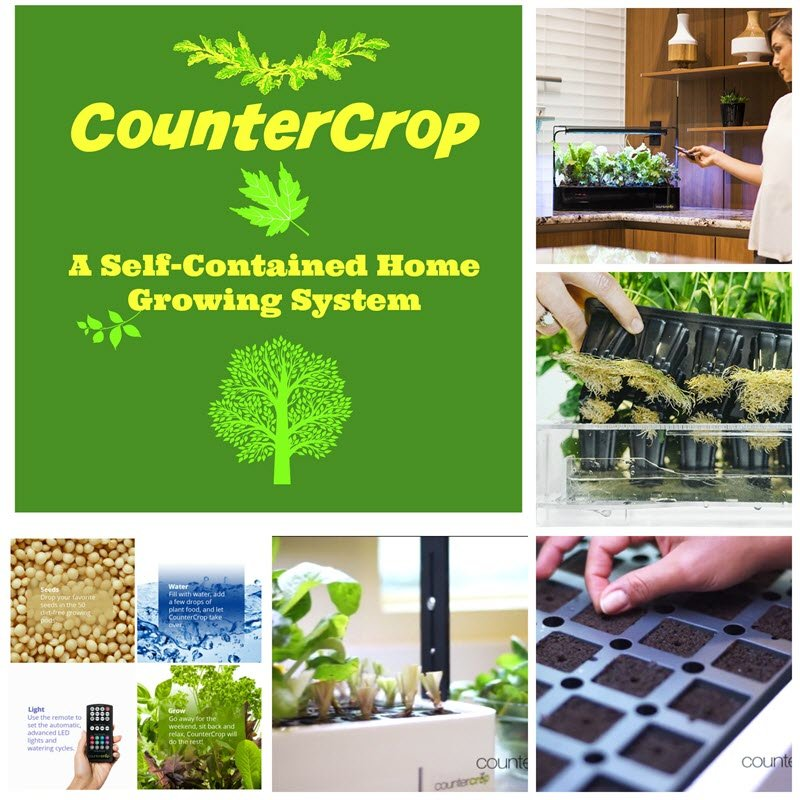 CounterCrop - A Self-Contained Home Growing System - Sassy Townhouse Living