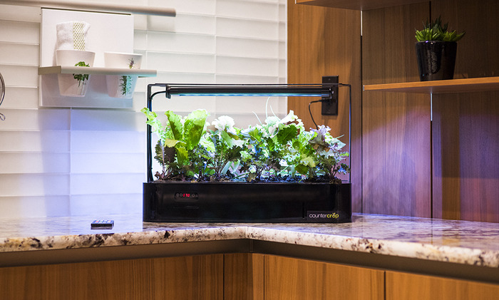 CounterCrop - A Self-Contained Home Growing System