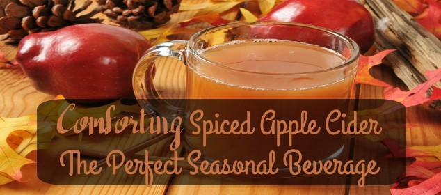 Comforting Spiced Apple Cider - The Perfect Seasonal Beverage - Sassy Townhouse Living