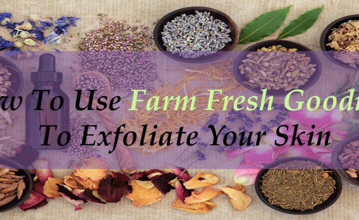 How To Use Farm Fresh Goodness To Exfoliate Your Skin - Sassy Townhouse Living