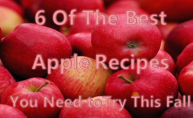 6 Of The Best Apple Recipes You Need to Try This Fall & Giveaway