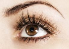 How To Get Thicker Fuller Luxurious Lashes And Brows