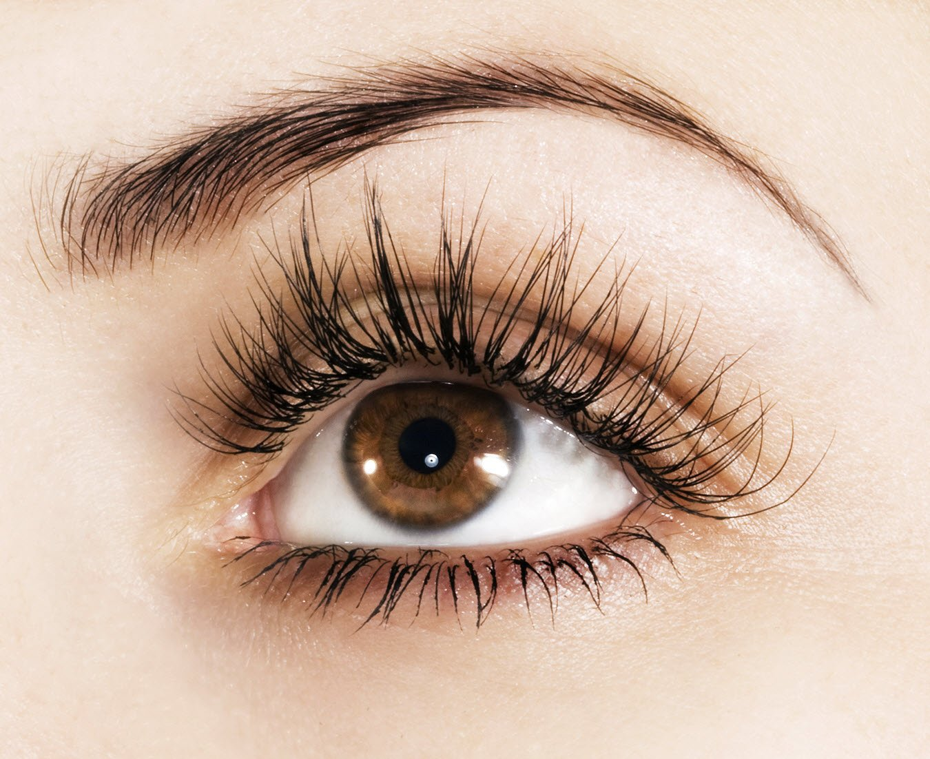 How To Get Thicker Fuller Luxurious Lashes And Brows Sassy