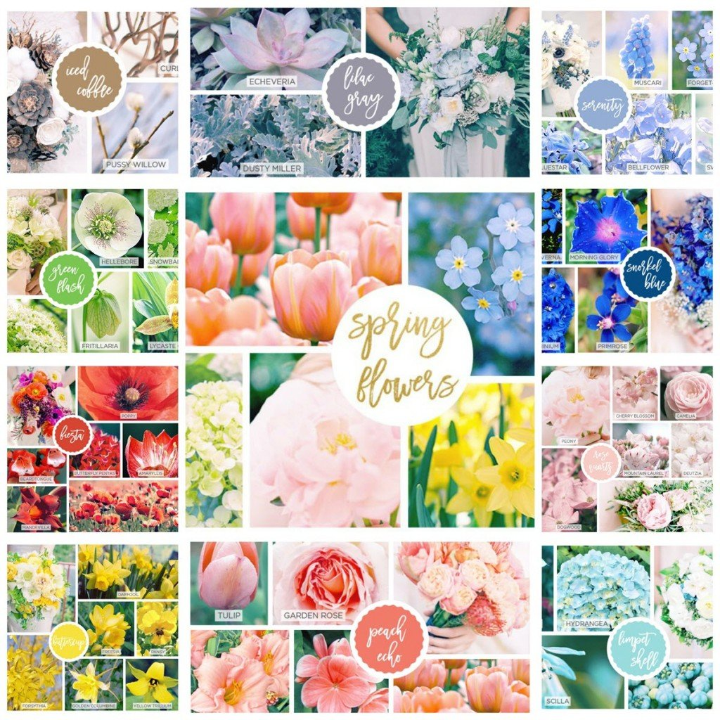 42 Spring Flowers Inspired by Pantone Colors of the Year-Sassy Townhouse Living