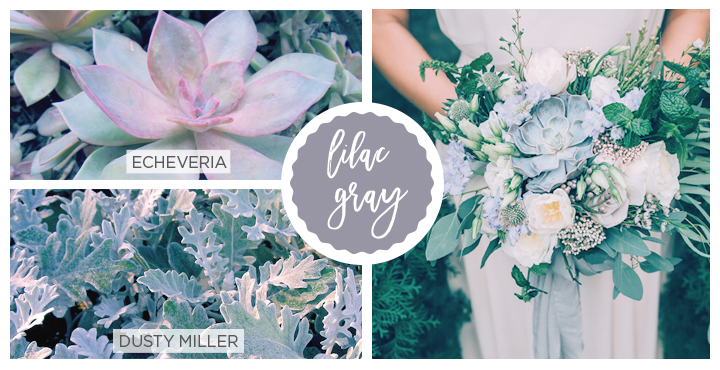 42 Spring Flowers Inspired by Pantone Colors of the Year