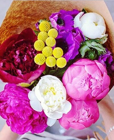32 Beautiful Summer Flowers And Their Complementary Colors