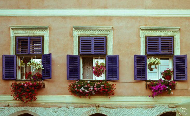 How to Revamp Your Windows This Summer
