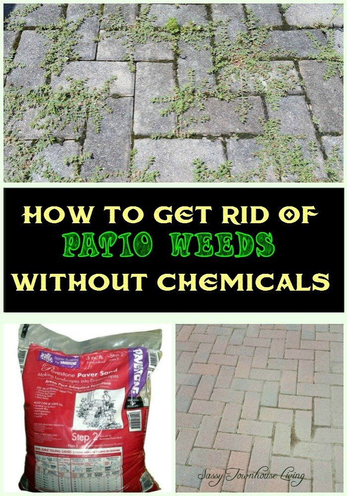 How To Get Rid Of Patio Weeds Without Chemicals Sassy Townhouse Living