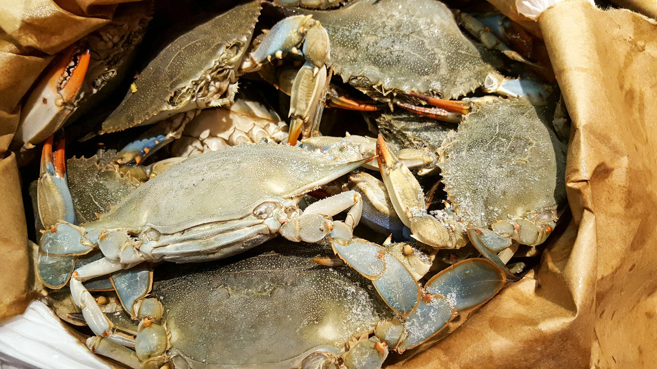 Fried Blue Crabs In Savory Tomato Sauce Recipe