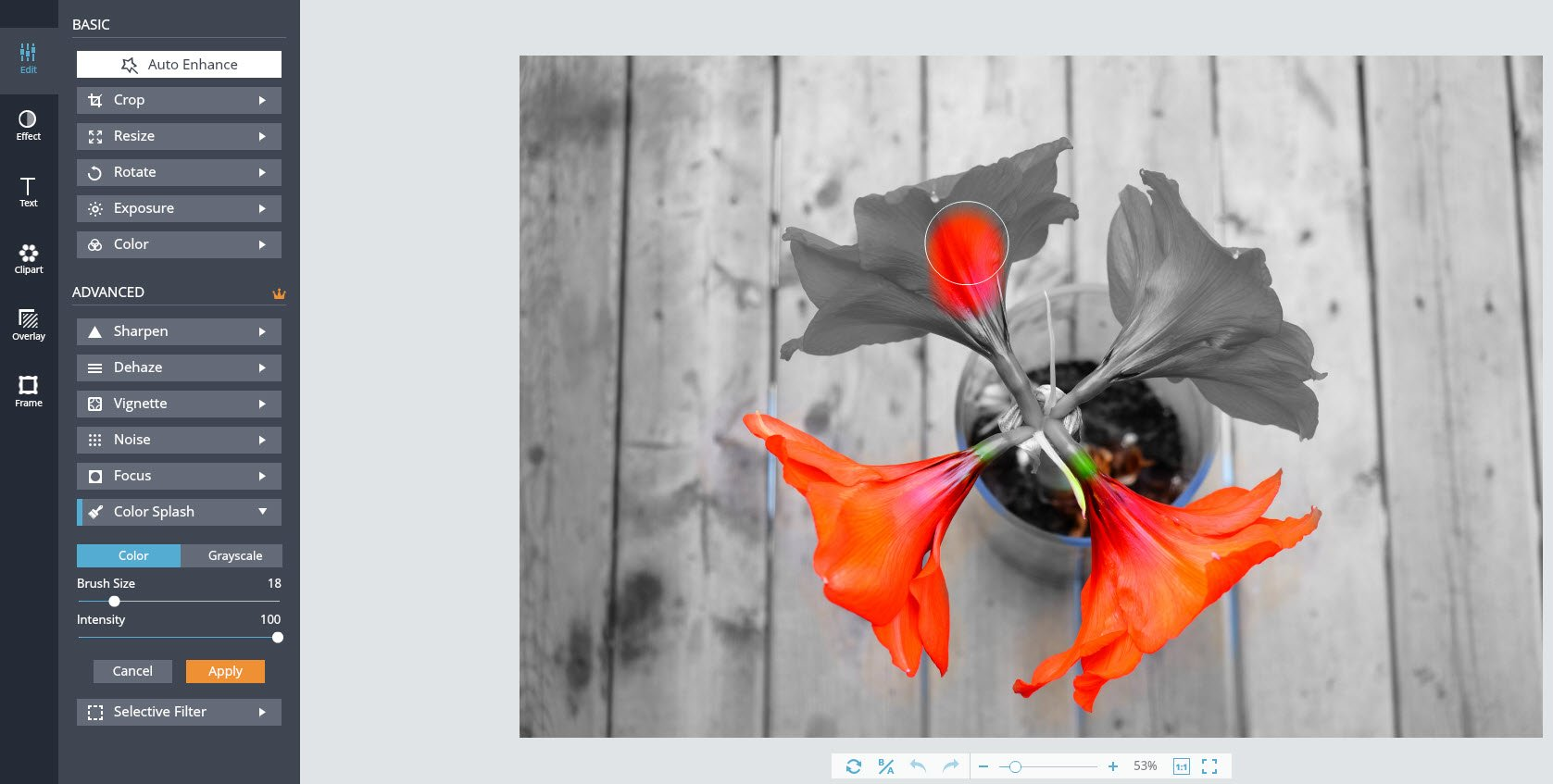 How To Easily Turn Your Photos into Beautiful Works of Art