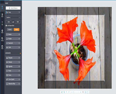 The Most Powerful Free Image Editing Tool You Will Ever Need