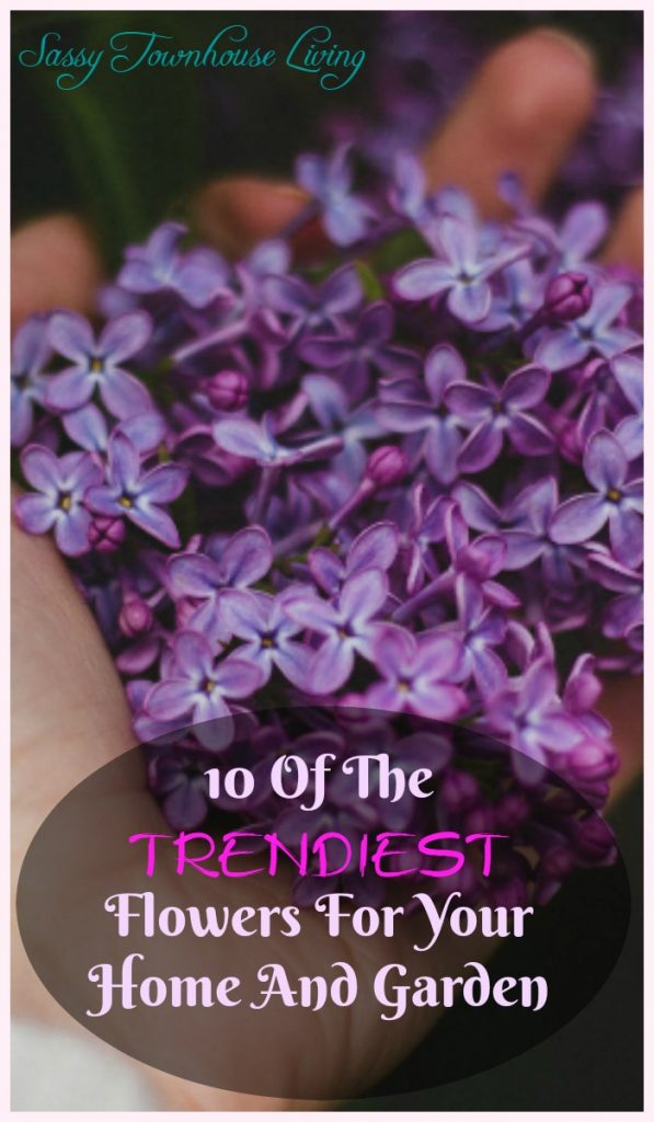 10 Of The Trendiest Flowers For Your Home And Garden - Sassy Townhouse Living