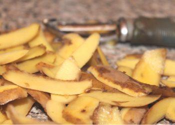 Potato Peels