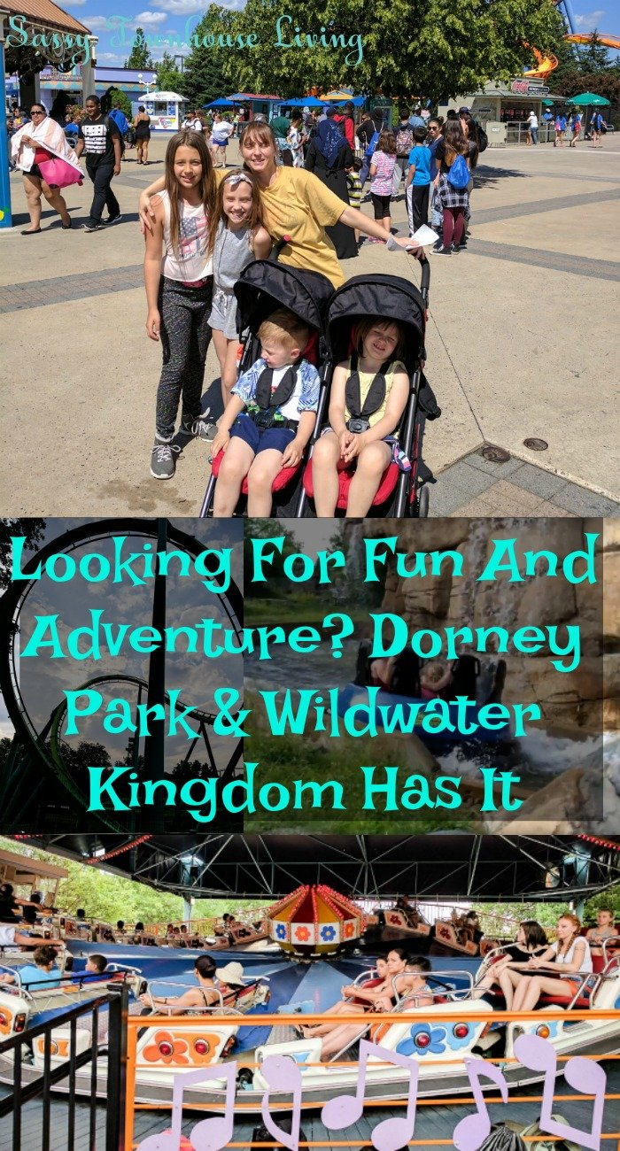 Looking For Fun And Adventure Dorney Park & Wildwater Kingdom Has It - Sassy Townhouse Living