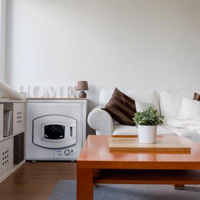 Newair Portable Mini Dryer