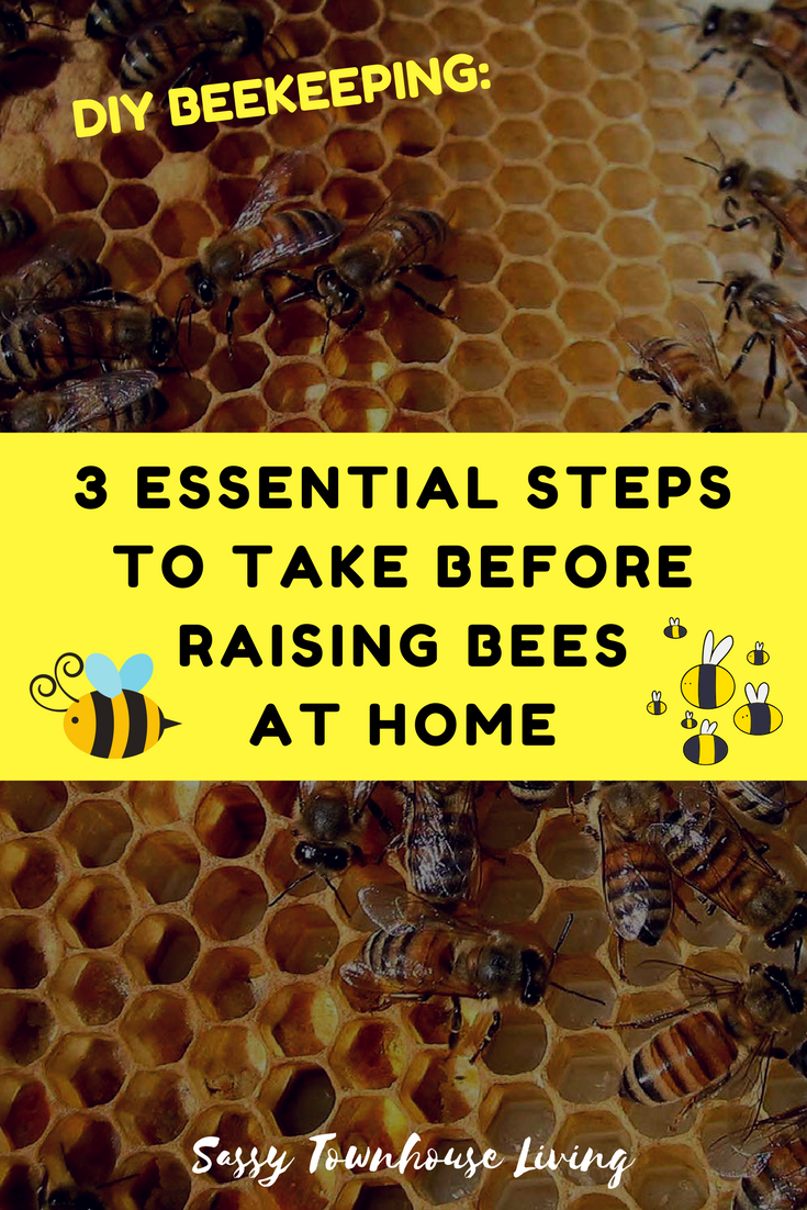 DIY Beekeeping 3 Essential Steps To Take Before Raising Bees At Home - Sassy Townhouse Living