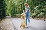 How To Find The Perfect Pet Sitter On The Go – Services For Every Dog