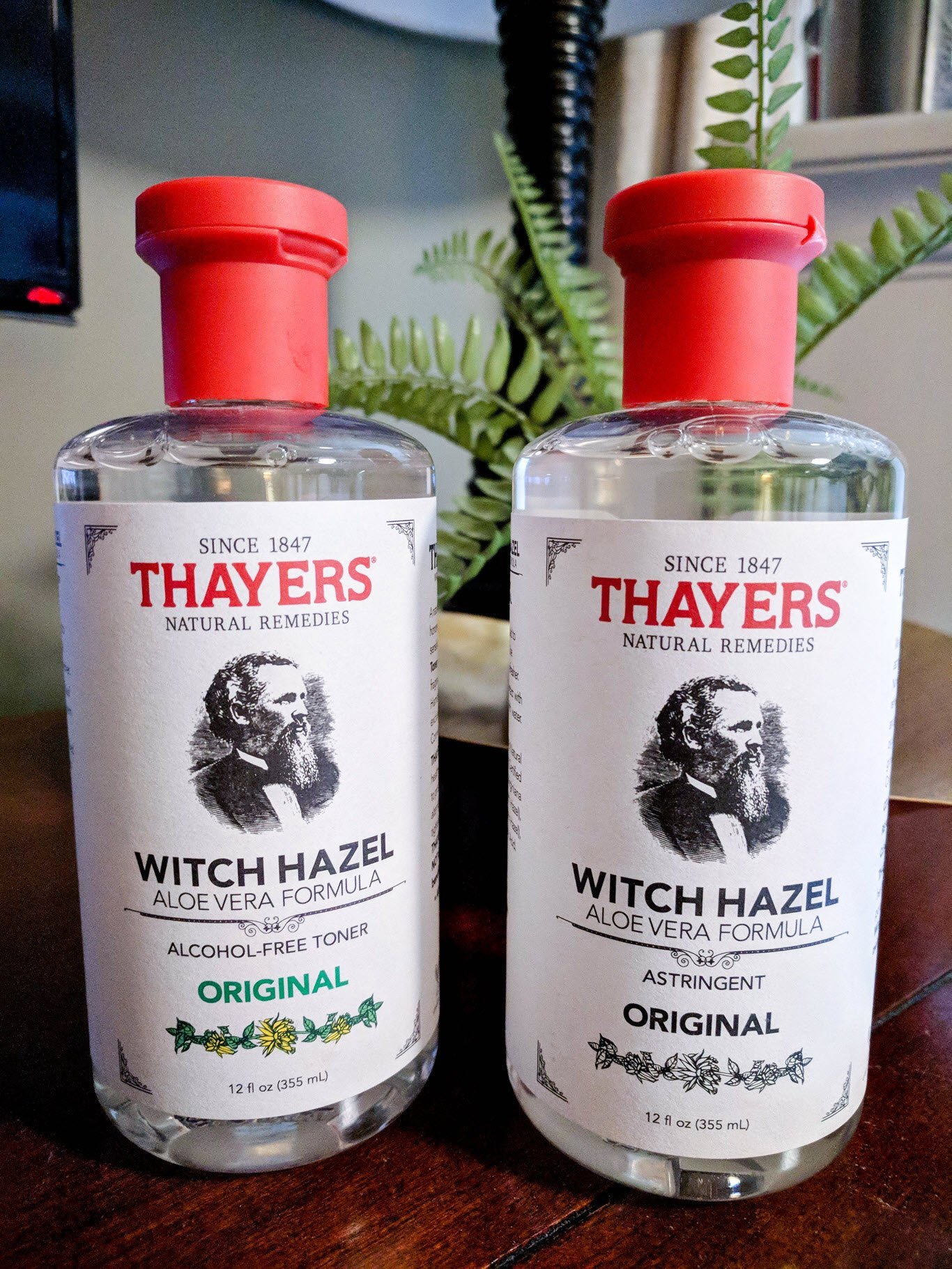 Witch Hazel Uses and Benefits