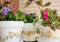 Efex Applique Clay Flower Pots