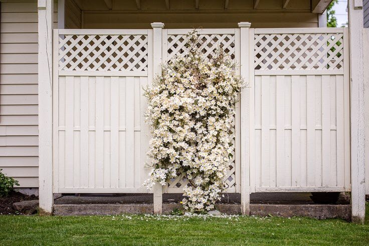 Types Of Garden Fences You Need To Learn About