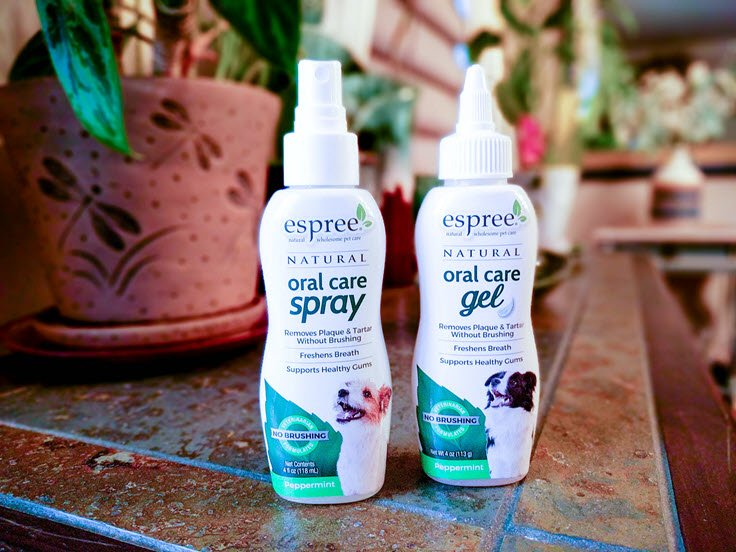 Why Your Dog Needs Espree Natural Oral Care Gel For Optimum Health