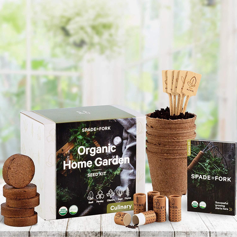 starter herb garden kit