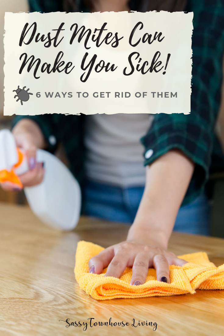 Dust Mites Can Make You Sick - 6 Ways To Get Rid Of Them - Sassy Townhouse Living