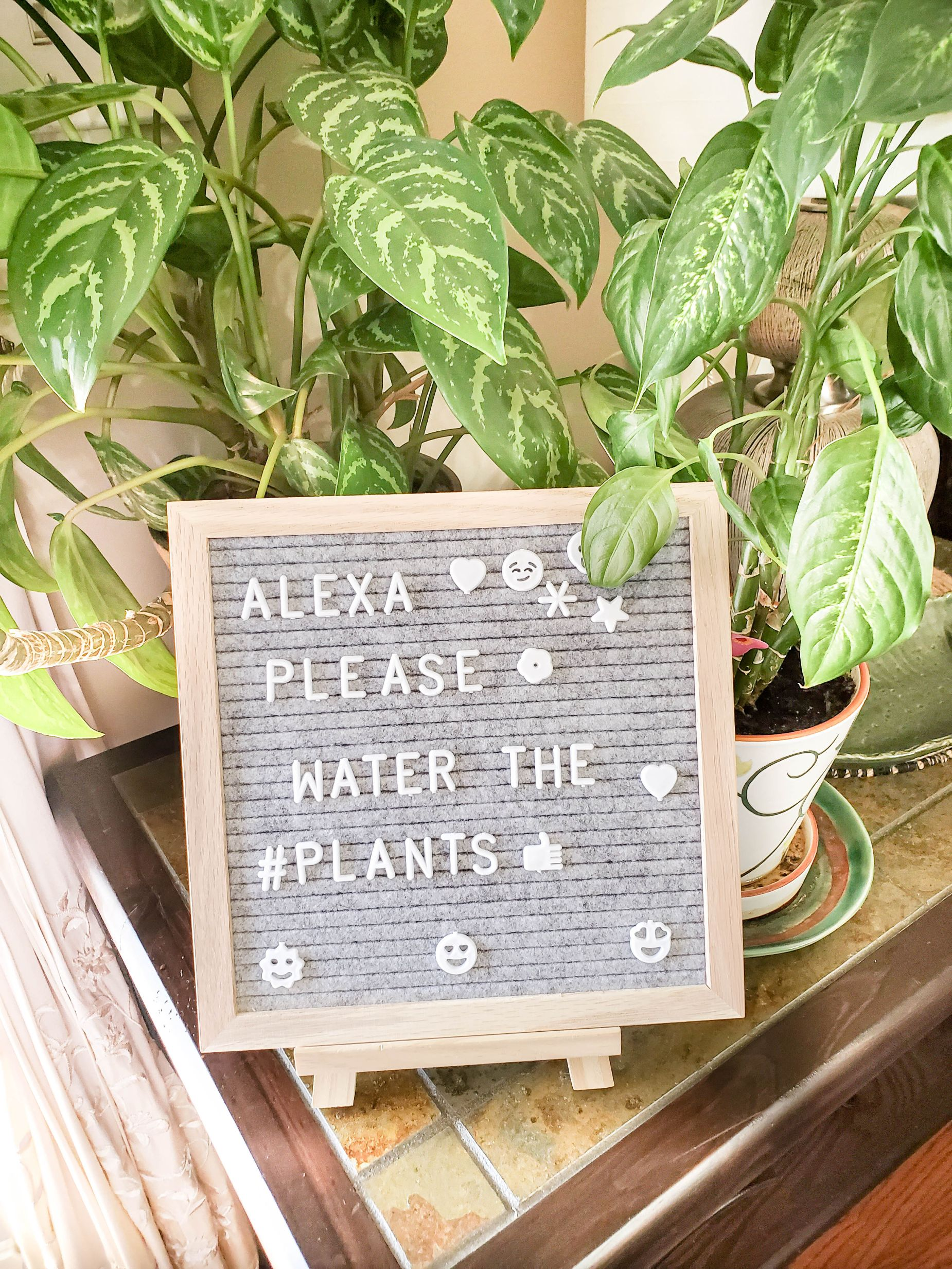 letter board Alexa quote
