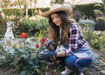How To Keep Your Garden Pest Free This Season