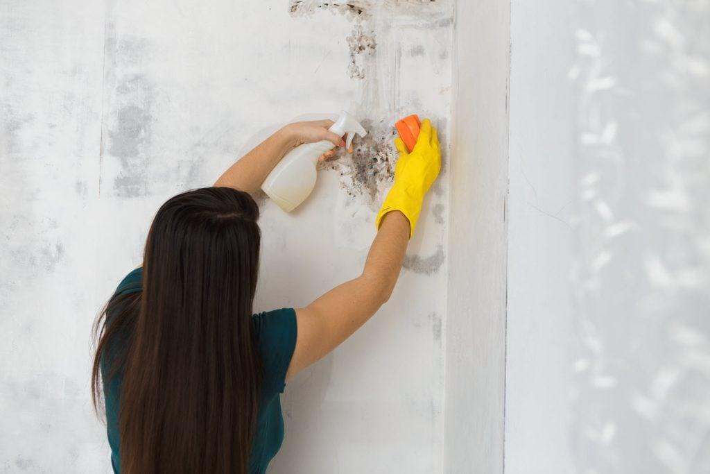 Healthy Home Checklist