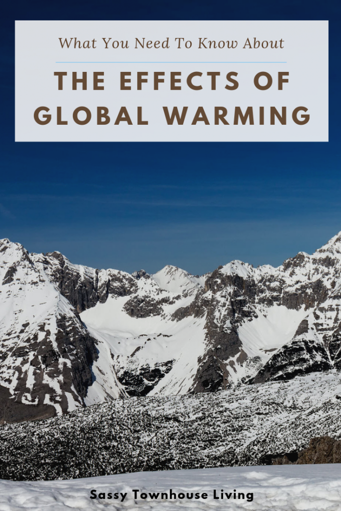 What You Need To Know About The Effects Of Global Warming - Sassy Townhouse Living