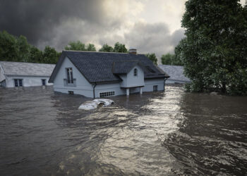 A Guide To Restoring Your Home After Disaster Strikes