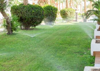 How To Get Your Yard in Shape With These Tips