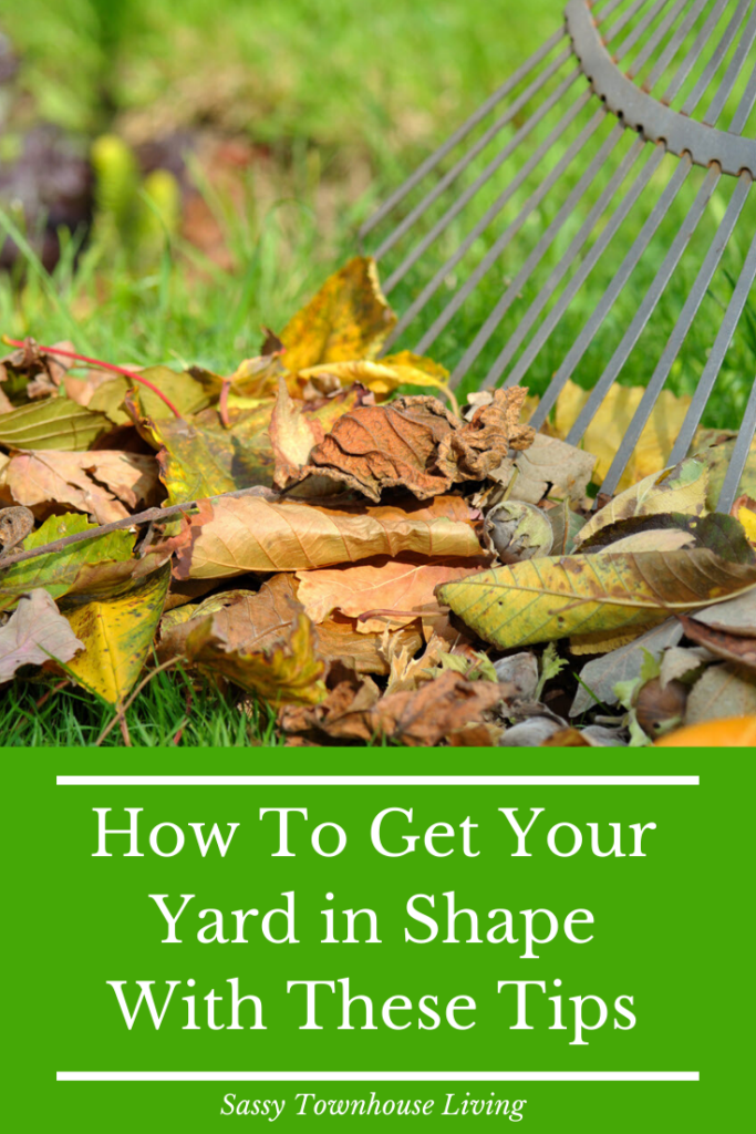 How To Get Your Yard in Shape With These Tips - Sassy Townhouse Living