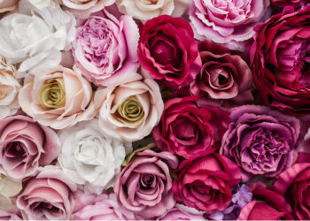 6 Rose Infused Products For A Romantic Valentine's Day