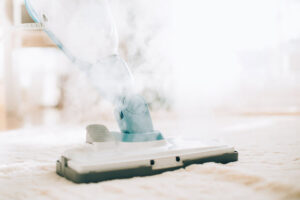 Steam Cleaners Are They Worth It For Disinfecting And Cleaning