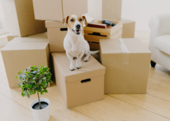 Moving Into A New House Important Things You Need To Check