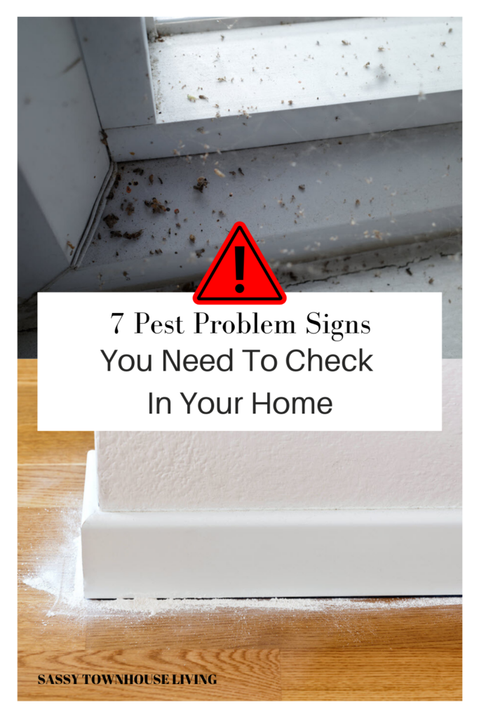7 Pest Problem Signs You Need To Check In Your Home - Sassy Townhouse Living