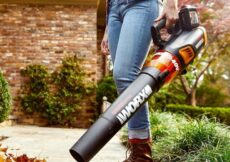 Lawn Maintenance Is Breeze With Worx Cordless Leaf Blower