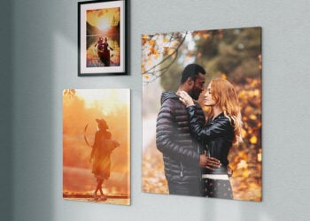 Perk Up Your Decor With New Wall Art & Lifestyle Accessories