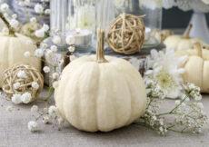 Fall Decor Ideas Autumn