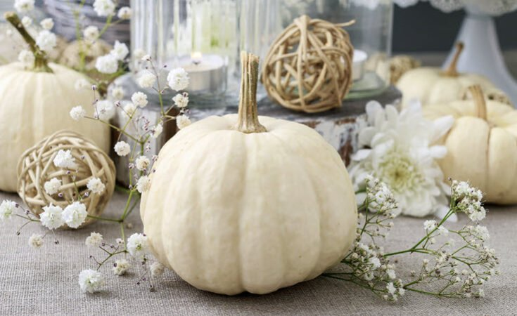Fall Decor Ideas Autumn