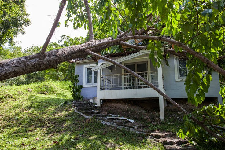 Types Of Storm Damage And How To Deal With It