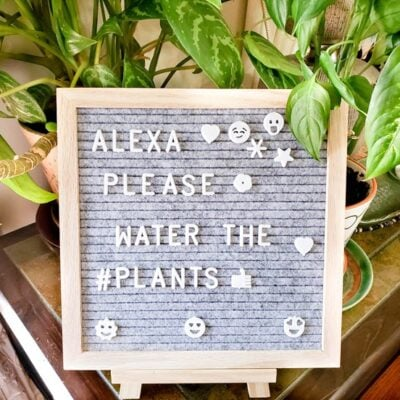 4 Reasons Why You Need To Own A Letter board FEATURED