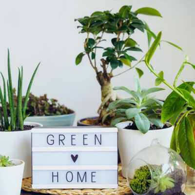 6 Eco-Friendly Home Products You Need To See FEATURED